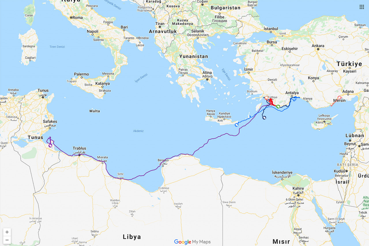 Caretta Caretta'ların Ferrarisi Likya; saatte 434 metre yol aldı ve 296 günde Antalya'dan Tunus'a ulaştı