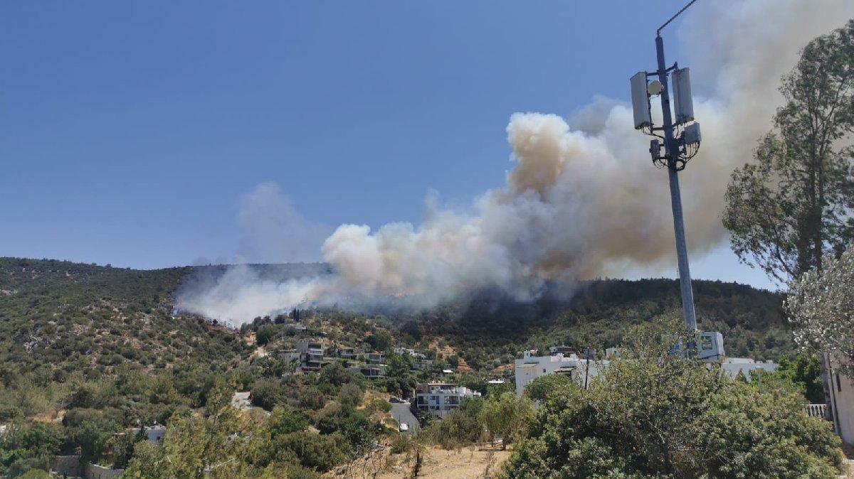 Bodrum'da yeni yangın: Bazı evler boşaltılıyor!