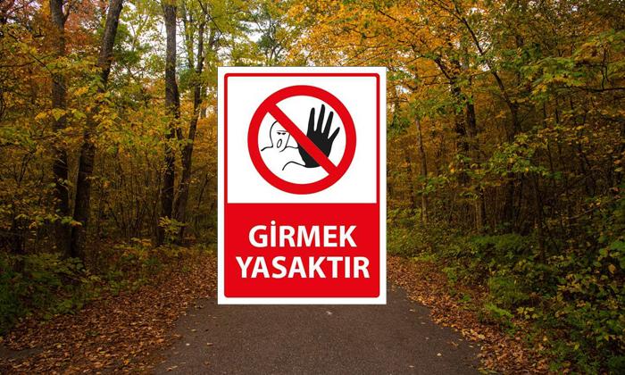 Balıkesir, İzmir, Aydın, Bursa, Çanakkale ve Gaziantep'ten sonra İstanbul'da da ormanlara giriş yasaklandı